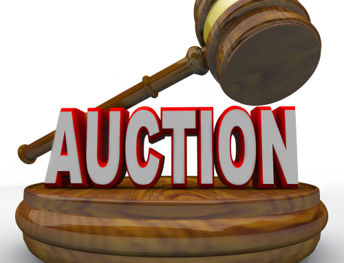 The 12'th Annual ACO Auction